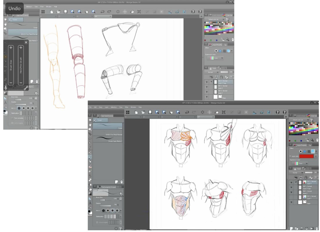 Human Anatomy for Illustrators Video Tutorials